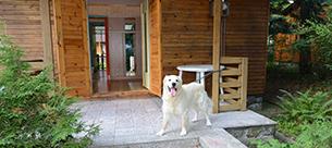 Levná dovolená se psem - Jedovnice